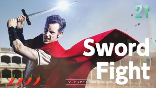 ソードファイト|1-2-SWITCHのゲーム収録内容と遊び方|隠し要素やコツも徹底解説!